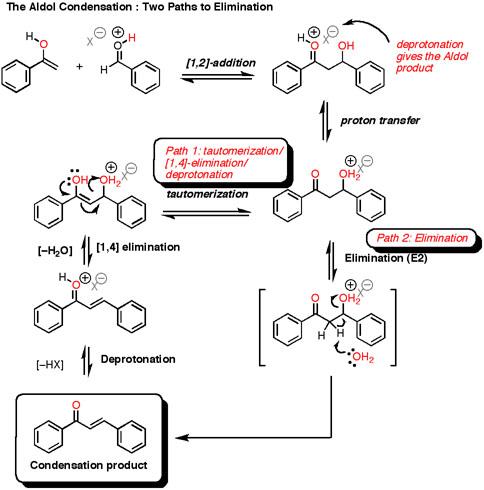 The Acid Catalyzed Aldol Reaction