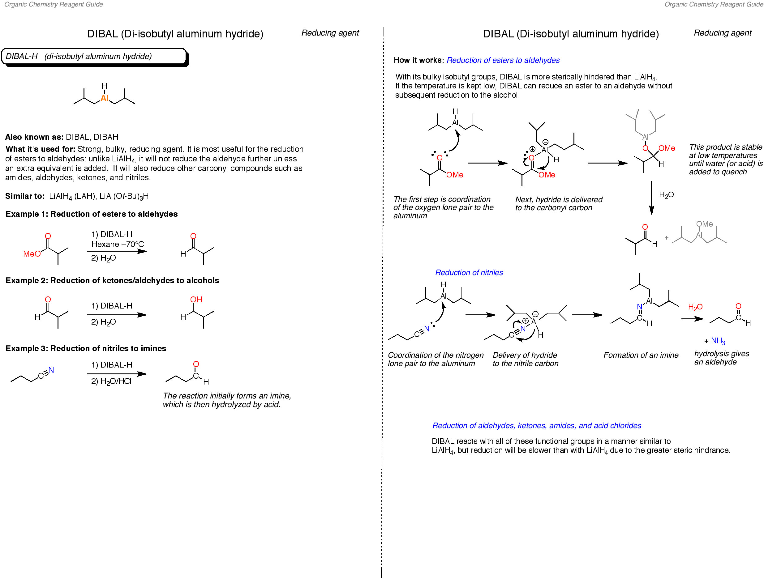organic compounds review sheet