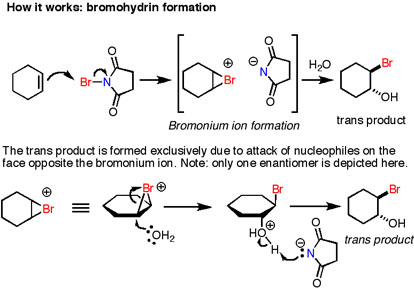 Expt 8 Nbs Bromination Images Frompo